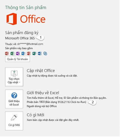 Kiểm tra phiên bản Office